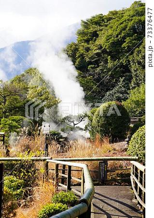 【大分県・別府温泉】天然坊主地獄 73376477