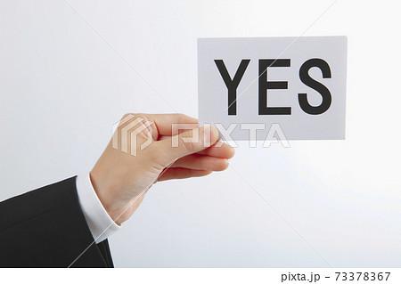 YESのカードを持つビジネスウーマンの手 73378367