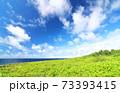 広大な草原と美しい空と海 73393415