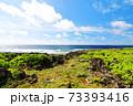 広大な岩場の陸地と美しい空と海 73393416