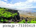 広大な岩場の陸地と美しい空と海 73393419