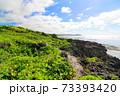 広大な岩場の陸地と美しい空と海 73393420
