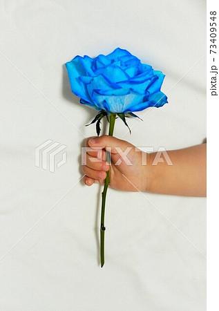 一輪のブルーローズを持つ子供の手 73409548