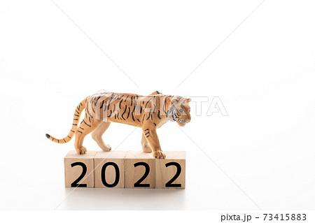 年賀素材 2022 73415883