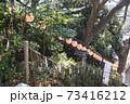 千葉県の「検見川神社」へ初めて初詣に行ってきた 73416212