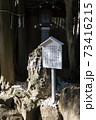 千葉県の「検見川神社」へ初めて初詣に行ってきた 73416215