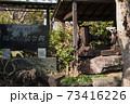 千葉県の「検見川神社」へ初めて初詣に行ってきた 73416226