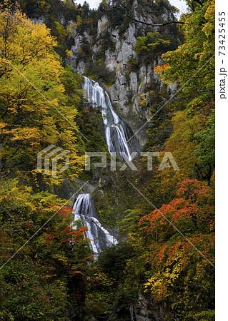 秋の羽衣の滝 73425455