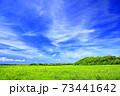 草原と青空 73441642