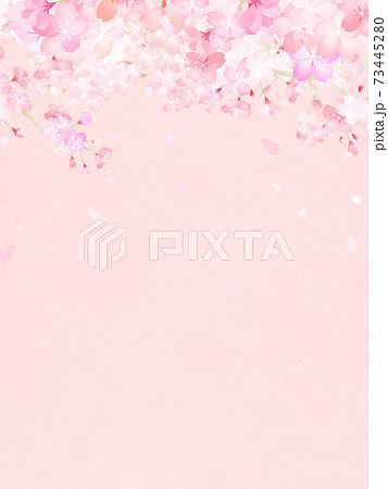 桜の背景 - 複数のバリエーションがあります 73445280