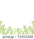 水彩風な新緑の下フレーム スクエア 73453266