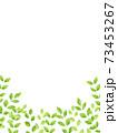 水彩風な新緑の下フレーム 縦 73453267