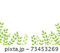 水彩風な新緑の下フレーム 73453269