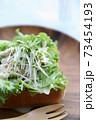オープンサンド 鶏肉サラダ 73454193