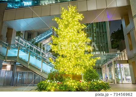 ビル内のクリスマスツリー(泉ガーデンタワー) 73456962