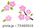 桜の花のアイコンセット  水彩テクスチャによるベクター素材 73460919