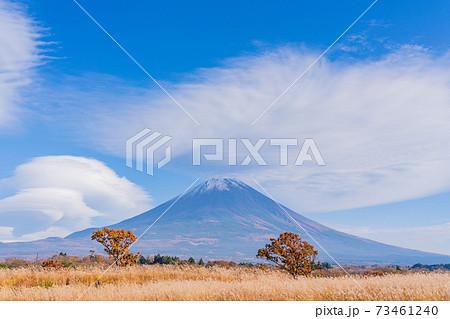 (静岡県)朝霧高原から望む、富士山 73461240