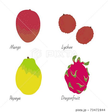 果物のイラスト-マンゴー・ライチ・パパイヤ・ドラゴンフルーツ タイトル変更 73472844
