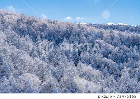 北横岳の樹氷と青空 【長野県】 73475168