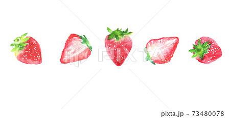 水彩で描いたイチゴのイラスト 73480078