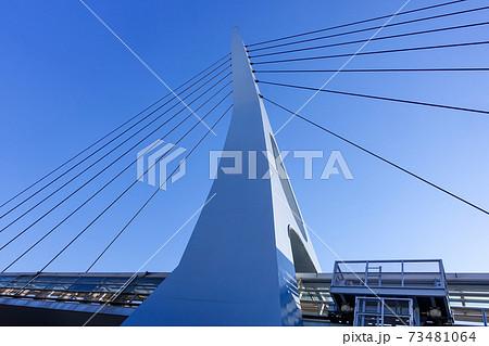 湾岸線を渡り東京テレポート駅とお台場海浜公園駅を結ぶるテレポートブリッジ 73481064