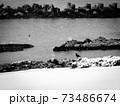 冬の日本海 73486674