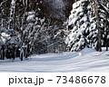 北海道の冬 73486678