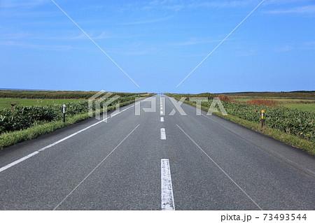 サロベツ原野の直線道路・道道106号線 73493544