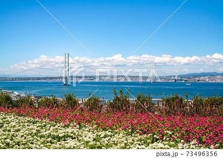 淡路島から見た明石海峡大橋と青空 73496356
