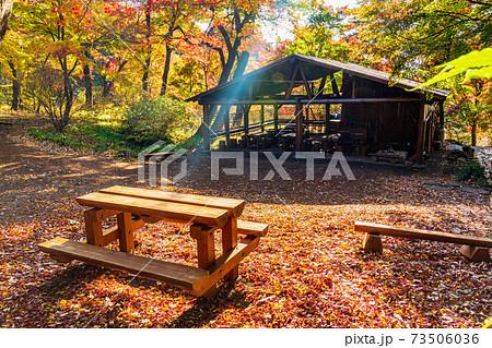 (群馬県)赤城自然園・四季の森 紅葉 73506036