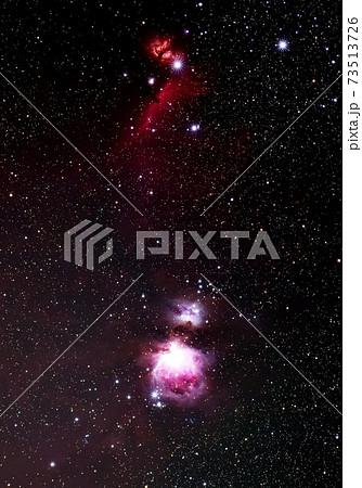 オリオン座の散光星雲 73513726
