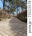 丘の上に桜が咲く公園へつながる急な坂道歩道(イラスト) 73523578