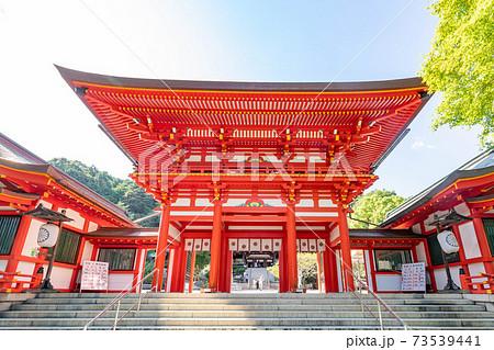 滋賀県 近江神宮 73539441