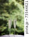 新緑の中、シャンパンで乾杯 73544621