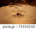 水滴の波紋 ブラウン コーヒー 73550240