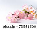 桜の木の枝 73561600