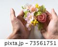 春のイメージ 桜 73561751