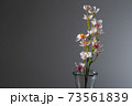 花瓶と桜 黒バック 73561839