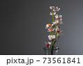 花瓶と桜 黒バック 73561841
