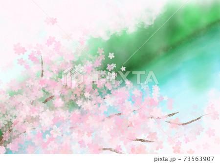 春爛漫の桜 水辺を見下ろす場所から見た満開の花 73563907