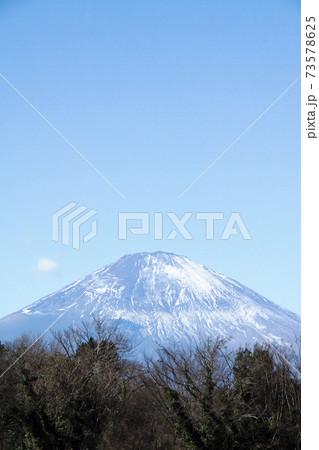 雪の少ない富士山(足柄サービスエリア下り線からの眺め) 73578625