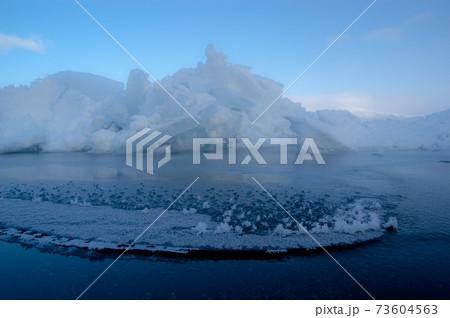 氷山とフラワーフロスト 73604563