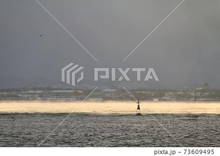 海水温と大気の温度差で発生した海霧 73609495