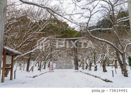 雪の竈門神社(かまどじんじゃ) 福岡県太宰府市 73614491