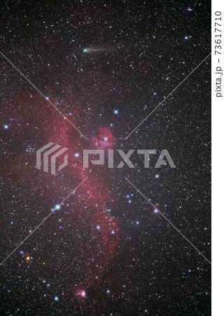かもめ星雲とジャコビニ・チンナー彗星 73617710