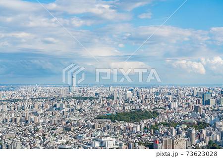 【東京都】大都市の風景 73623028