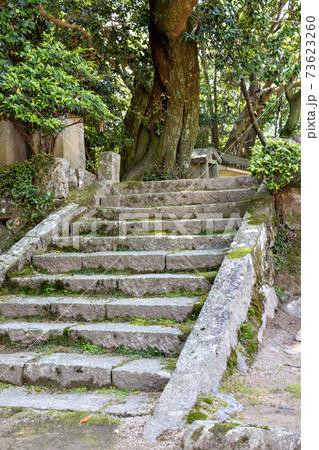 兵庫県三田市にある花山院菩提寺の参道 73623260