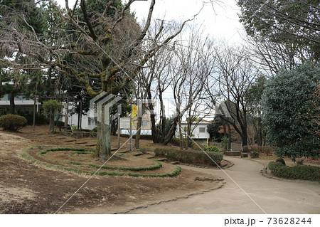 東京都三鷹市牟礼3丁目にある牟礼の里公園の広場入り口にある桜の木 73628244