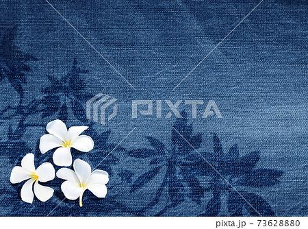 色落ちデニムに描いた、プルメリアの葉っぱと白い花 73628880