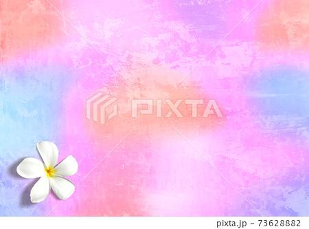 グラデーションが綺麗なトロピカルイメージ、プルメリアの花 73628882